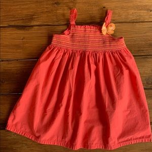 Gymboree SOCIAL BUTTERFLY Smocked Dress